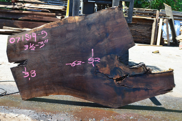 Oregon Black Walnut Slab 071514-05