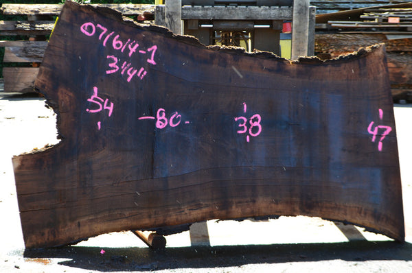 Oregon Black Walnut Slab 071614-01