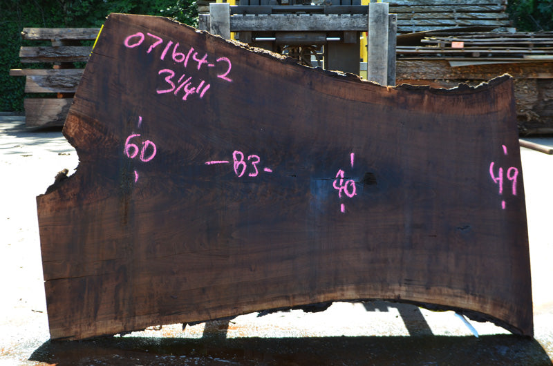 Oregon Black Walnut Slab 071614-02