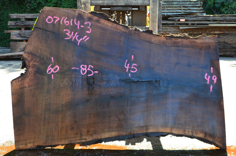 Oregon Black Walnut Slab 071614-03