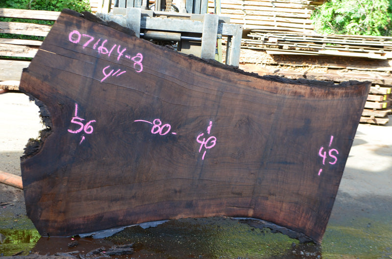 Oregon Black Walnut Slab 071614-08