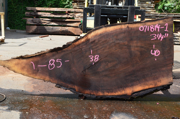 Oregon Black Walnut Slab 071814-01