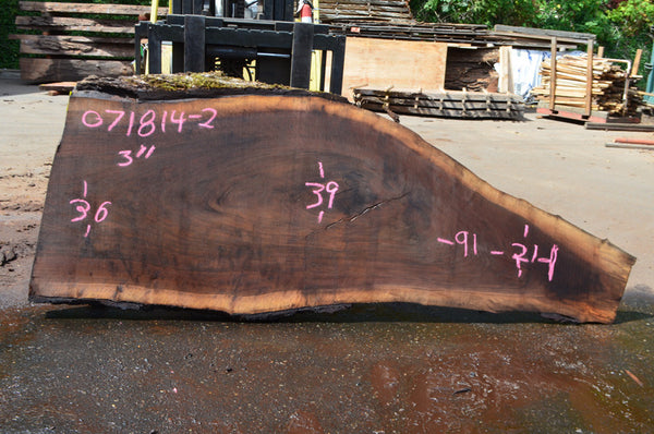 Oregon Black Walnut Slab 071814-02