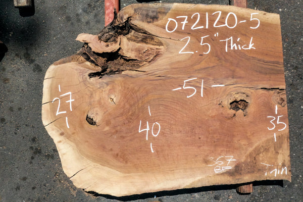 Oregon Black Walnut Slab 072120-5