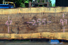 Bastogne Walnut Slab 072217-09