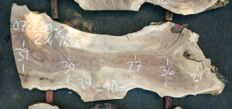English Walnut Slab 072220-23