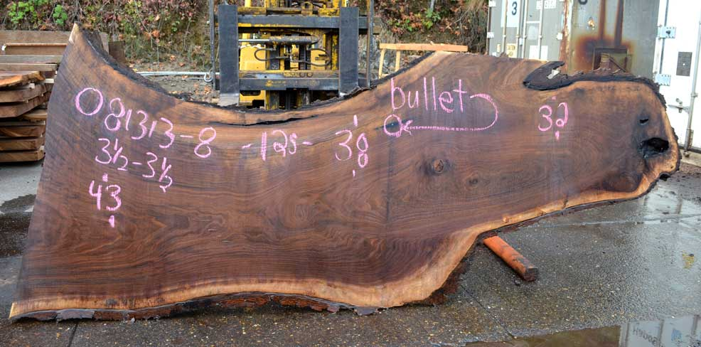 Oregon Black Walnut Slab 081313-08