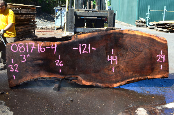 Oregon Black Walnut Slab 081716-04