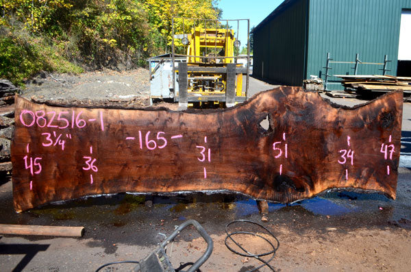Oregon Black Walnut Slab 082516-01