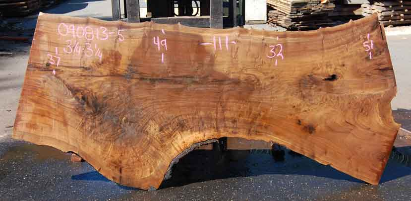 Oregon Black Walnut Slab 090813-05