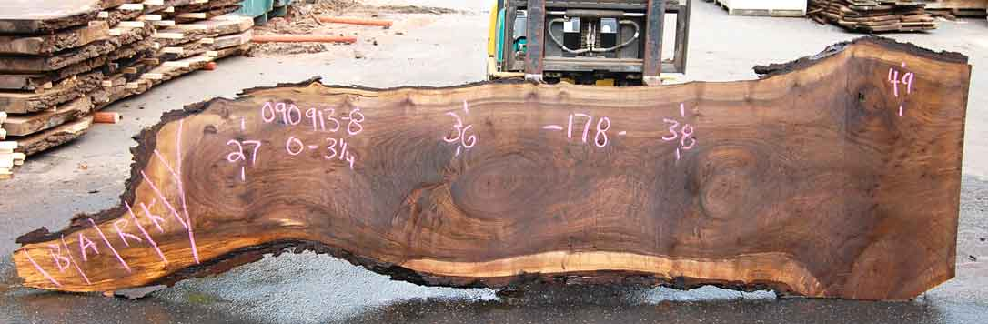 Oregon Black Walnut Slab 090913-08