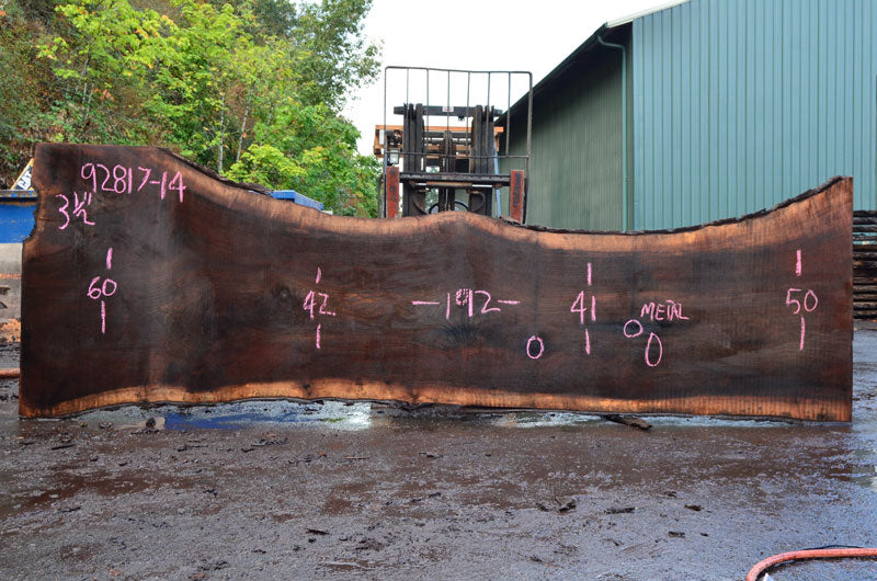 Oregon Black Walnut Slab 092817-14