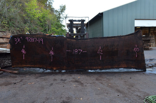 Oregon Black Walnut Slab 092817-19