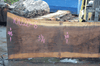 Oregon Black Walnut Slab 101220-08