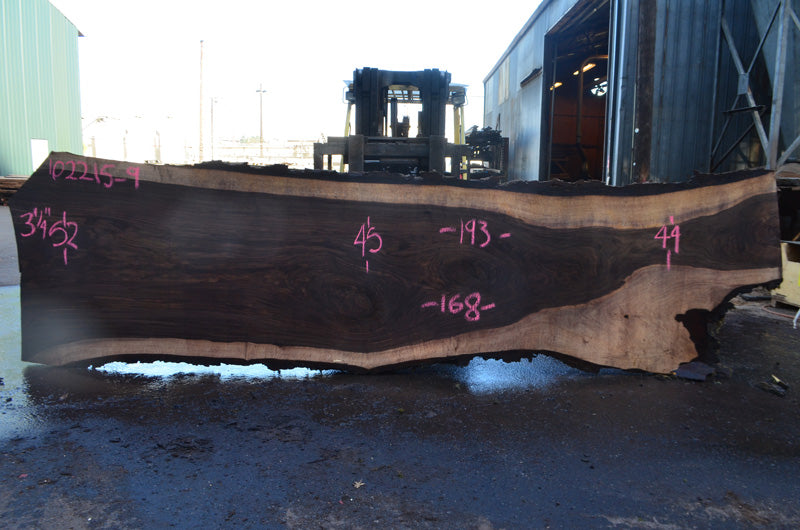 Oregon Black Walnut Slab 102215-09