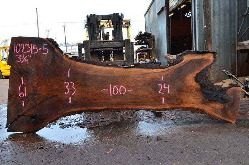 Oregon Black Walnut Slab 102315-05