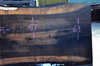 Oregon Black Walnut Slab 102317-10