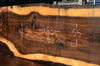 Oregon Black Walnut Slab 102317-12