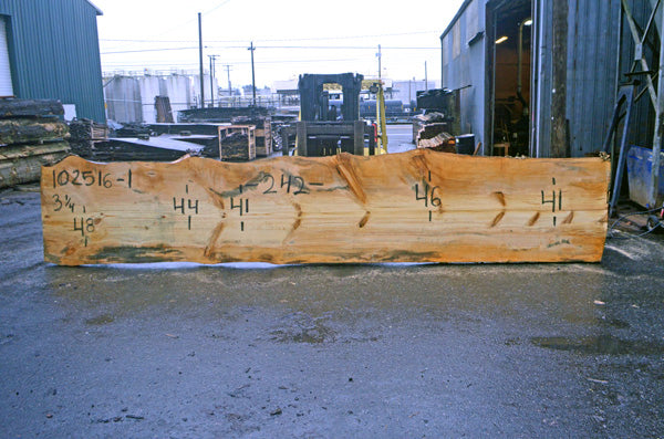 Oregon Fir Slab 102516-01