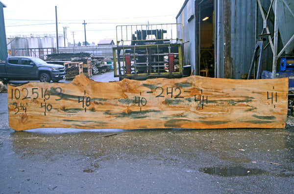 Oregon Fir Slab 102516-03