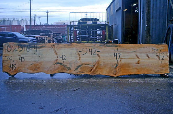 Oregon Fir Slab 102516-04