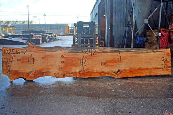 Oregon Fir Slab 102516-07