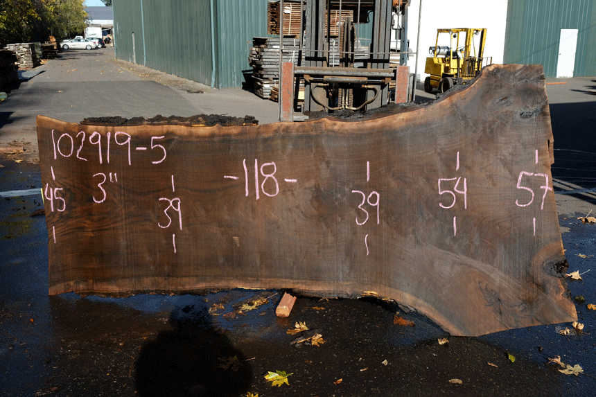 102919-05 Black Walnut Slab