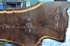 Oregon Black Walnut Slab 103117-07