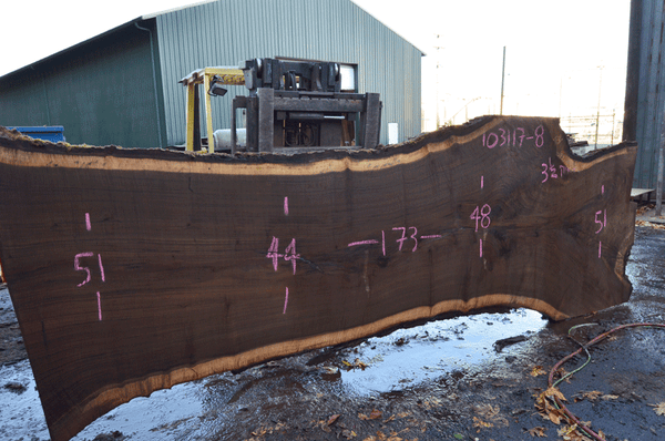Oregon Black Walnut Slab 103117-08