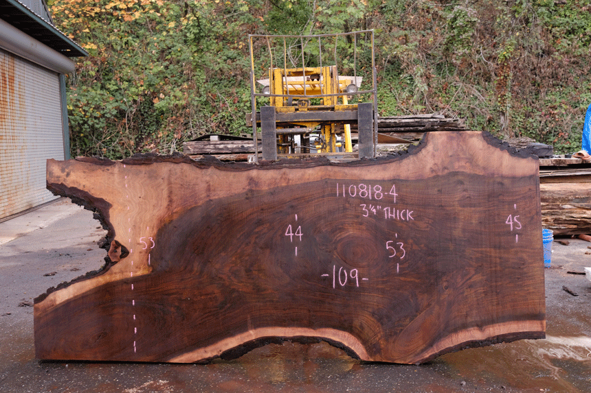 110818-04 Oregon Black Walnut Slab