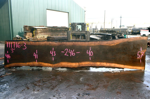 Oregon Black Walnut Slab 111716-03