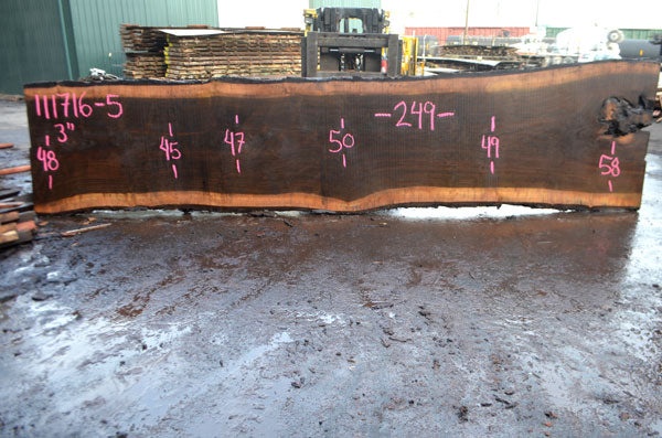 Oregon Black Walnut Slab 111716-05