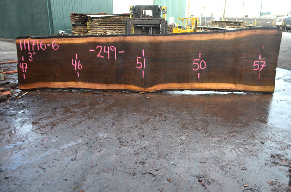 Oregon Black Walnut Slab 111716-06