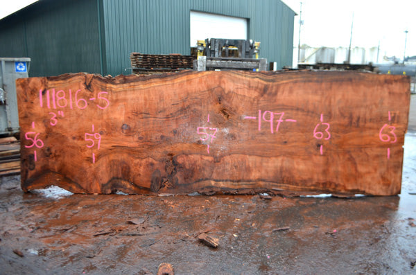 Oregon Redwood Slab 111816-05