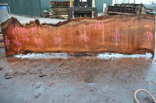 Oregon Redwood Slab 111816-10