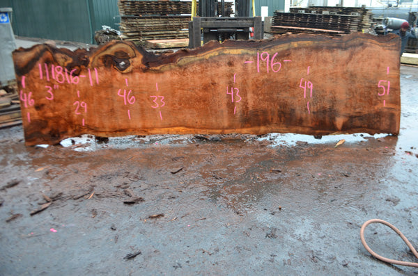 Oregon Redwood Slab 111816-11