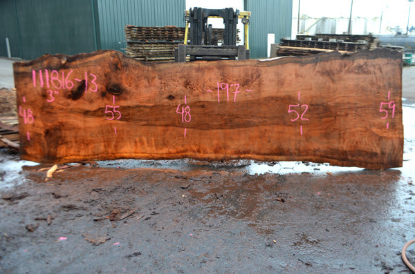Oregon Redwood Slab 111816-13