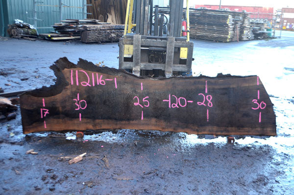 Oregon Black Walnut Slab 112116-01
