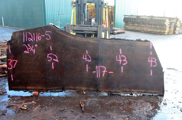 Oregon Black Walnut Slab 112116-05
