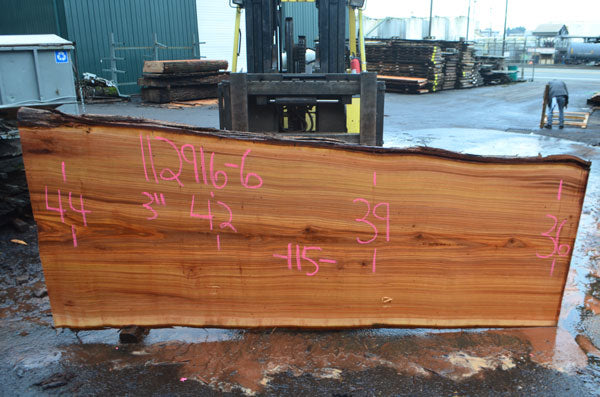 Oregon Cedar Slab 112916-06