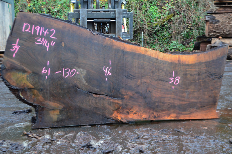 Oregon Black Walnut Slab 121914-02