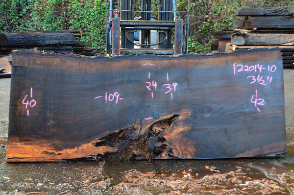 Oregon Black Walnut Slab 122014-10