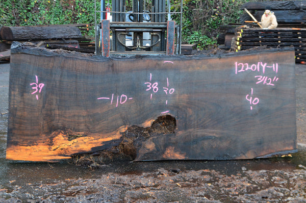 Oregon Black Walnut Slab 122014-11