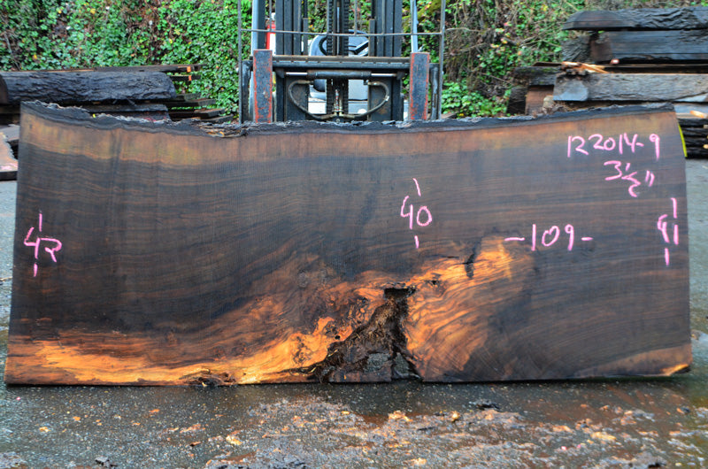 Oregon Black Walnut Slab 122014-09