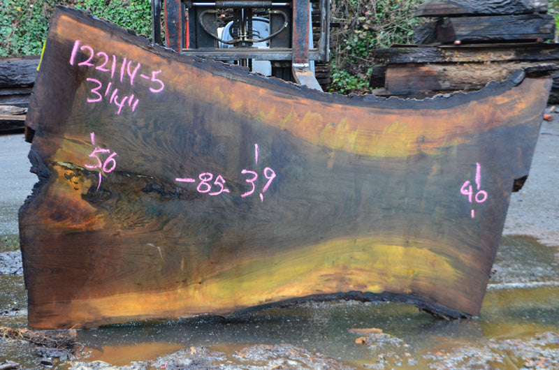 Oregon Black Walnut Slab 122114-05