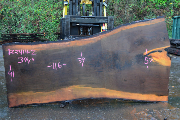 Oregon Black Walnut Slab 122414-02