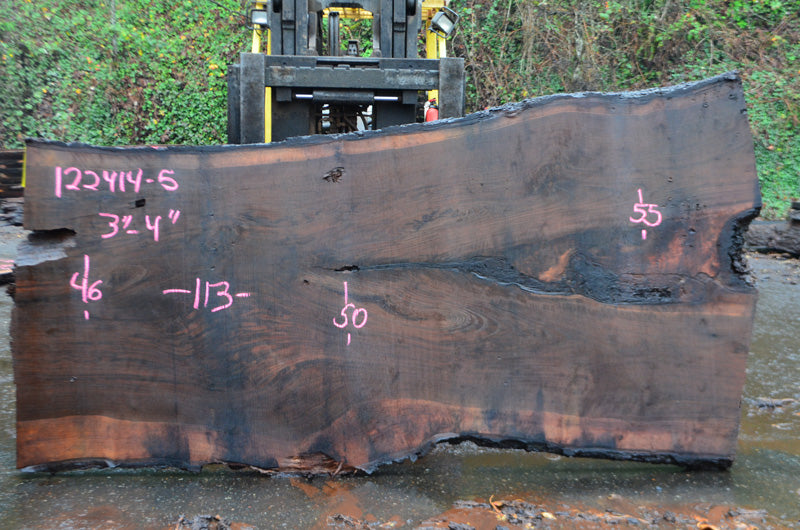 Oregon Black Walnut Slab 122414-05