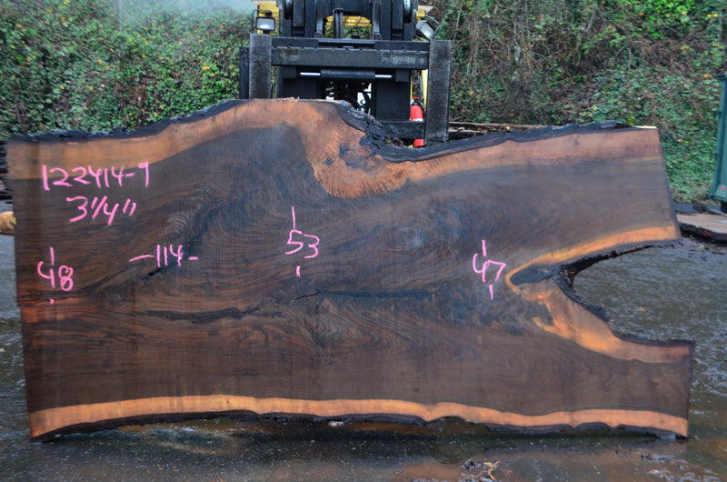 Oregon Black Walnut Slab 122414-09