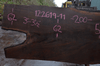 Oregon Black Walnut Slab 122619-11