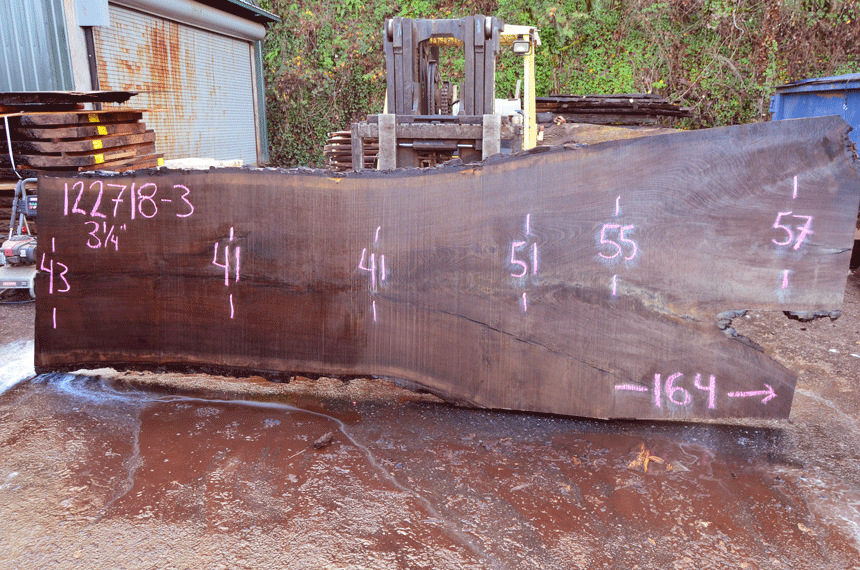 122718-03 Oregon Black Walnut Slab